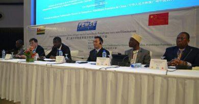La coopération Chine-Afrique part en guerre contre le paludisme dans les pays endémiques